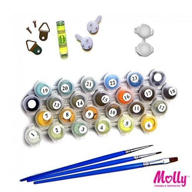 "Раскраски по номерам ""Модник"", 12 цветов, 20х30, MOLLY"